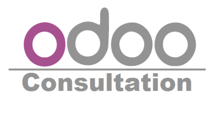 Odoo ERP Consulting